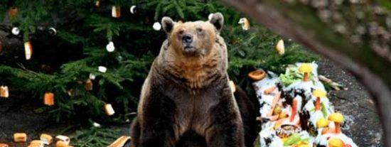 Descubre los mejores mercadillos navideños de República Checa