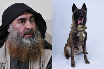 El último héroe americano es este perro