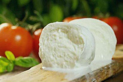 Propiedades del queso mozzarella