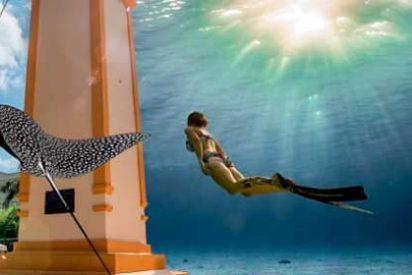 Cozumel será sede del festival de buceo más importante de México