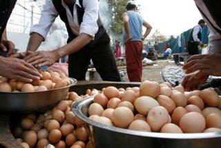Un hombre de 42 años muere al intentar ganar una insólita apuesta: comerse 50 huevos de una sentada