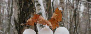 Descubren miles de brillantes e inquietantes 'huevos de hielo' en una playa de Finlandia