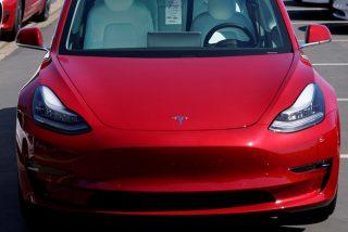 Vídeo viral: Mira cómo el piloto automático de este Tesla esquiva a una familia de patos que cruzaba la carretera