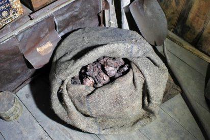 Descubren en un refugio antártico cebollas de más de 100 años conservadas perfectamente