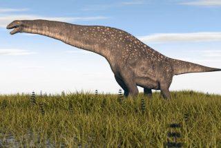 Hallan los restos de un titanosaurio de hace 85 millones de años