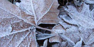 Nueva masa de aire polar volverá a desplomar las temperaturas: habrá nieve por encima de los 700 metros