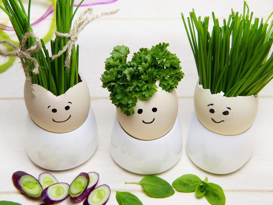 Diabéticos: recetas caseras para triunfar y disfrutar