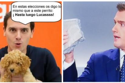 """El fiasco de Ciudadanos copa los memes más tronchantes en Twitter: """"¡Hasta luego, Lucas!"""""""