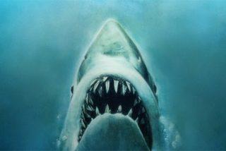 Tiburón: ¿No se te arruga el corazón cada vez que vez esta escena?