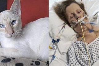 Esta mujer contrae una bacteria que come carne y sufre dos ataques cardíacos por el arañazo de su gato