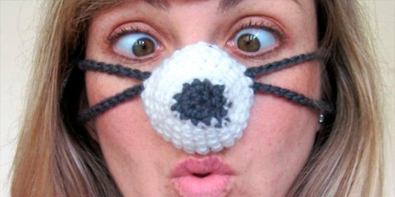 ¿Sabías que las narices frías nutren los resfriados?