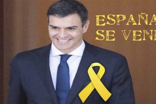 Sánchez se saltará la Constitución para agradar a los separatistas aceptando un referéndum en Cataluña para restituir el Estatut que tumbó el TC