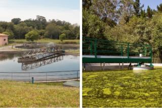 El agua, objetivo estratégico de la Xunta de Galicia para lograr una vida más saludable
