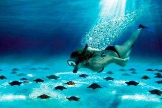 Cozumel: Un paraíso en el Caribe Mexicano