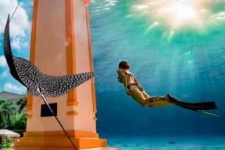 Cozumel se prepara para celebrar el Scuba Fest 2019, el festival de buceo más importante del mundo