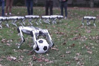 El partido de fútbol más adorable e inquietante: Los juegan robots Mini Cheetah del MIT