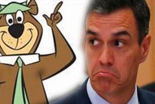 """Vídeo viral: Comparan el tono de voz de Sánchez con el del Oso Yogui…""""es clavadito"""""""