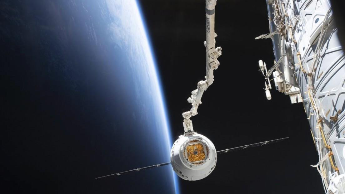 ¿Sabes para qué recibe la Estación Espacial Internacional, ratones modificados genéticamente, miles de gusanos y un robot?