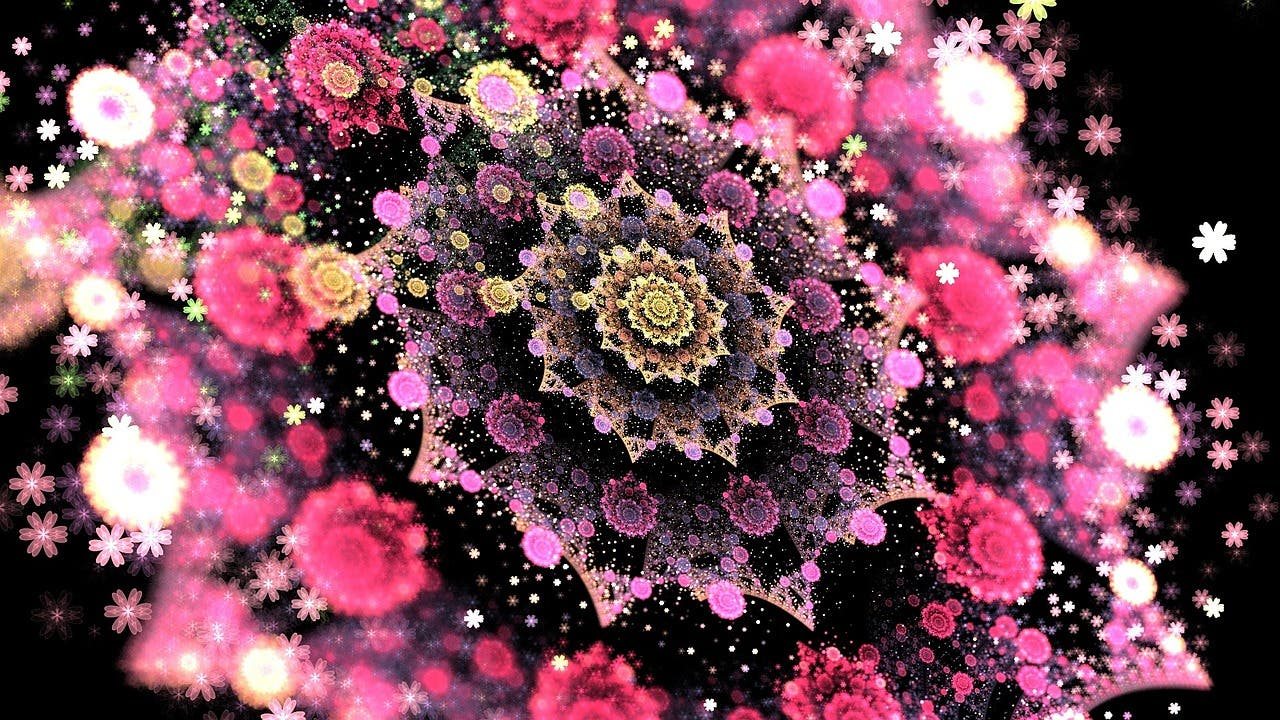 """¿Sabes qué son los fractales, los patrones matemáticos infinitos a los que se les llama """"la huella digital de Dios""""?"""