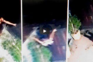 Este torpe ladrón intenta saltar el muro de una casa y se rompe la cara contra el suelo al caer