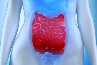 La causa de la depresión puede estar en tu intestino