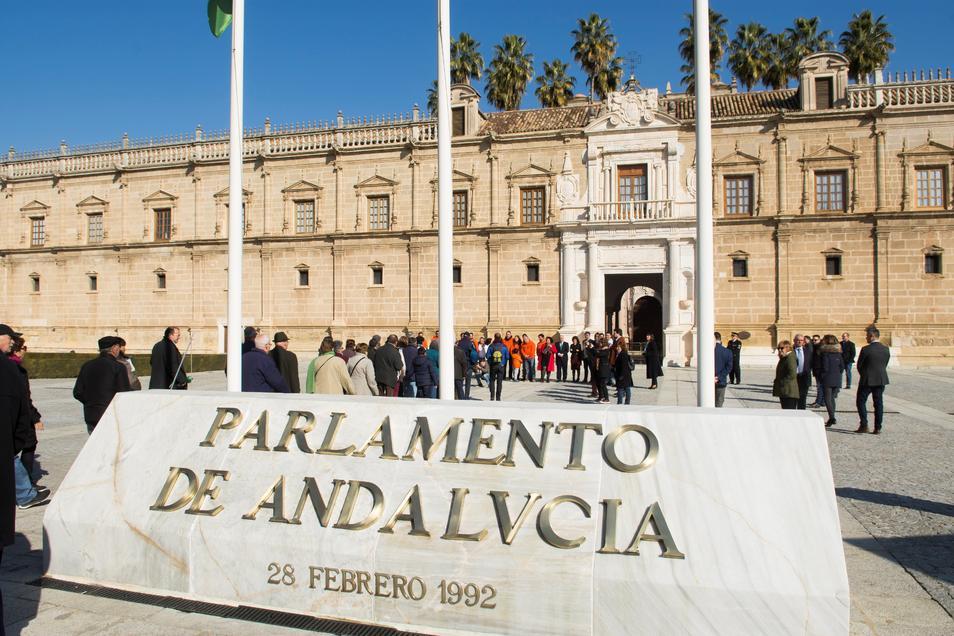 C´s logra aprobar por unanimidad la creación de un pacto nacional en defensa de la Dependencia