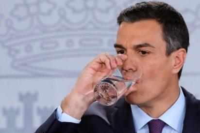 El trago más amargo de Pedro Sánchez: Moncloa supedita la copa de Navidad a una imposible investidura