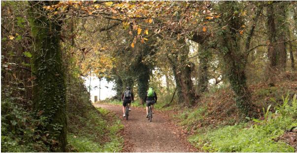 El Camino de Santiago en otoño, conoce Galicia de una manera diferente