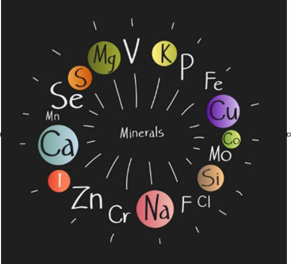minerales, oligoelementos