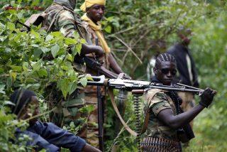 Un grupo de separatistas de Camerún tirotea a un avión de pasajeros cuando aterrizaba