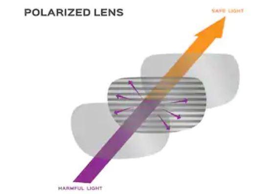 lentes polarizadas y rayos del sol