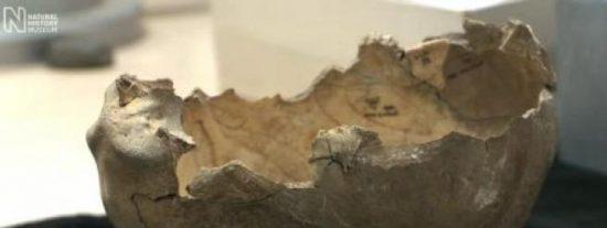 Los humanos usaron cráneos como cuencos por más de 15.000 años