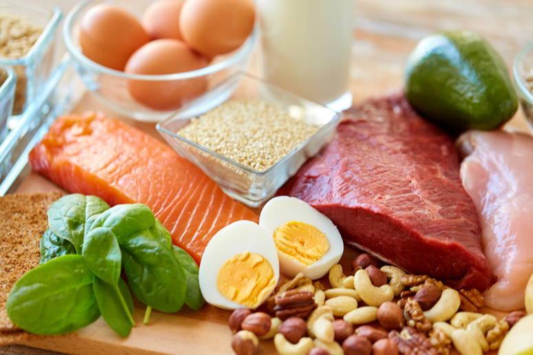 La proteína deber ser de muy buena calidad