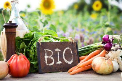 Las mejores áreas para la agricultura ecológica en España