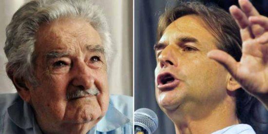 Uruguay: El plan de repoblación del país con más vacas que personas (que no le gusta a la izquierda)