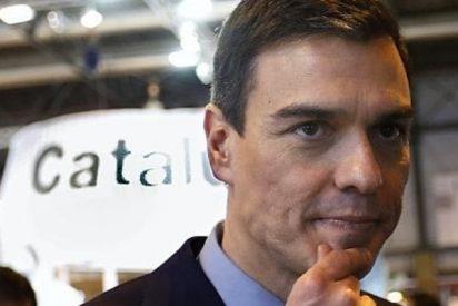 El xenófobo Torra se rebela contra el Estado de Derecho y el claudicante Sánchez no dice ni pío