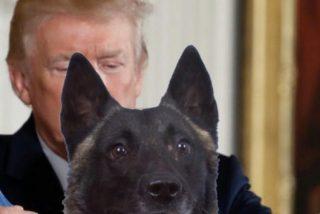 """Victor Entrialgo De Castro: """"El perro de Donald"""""""