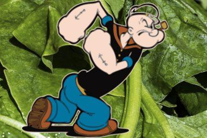 Espinacas: Popeye tenía razón y ahora la Agencia Mundial Antidopaje analiza a fondo esta verdura a la búsqueda del componente mágico