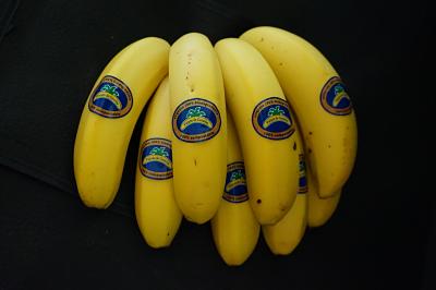 Plátano de Canarias ofrecerá un nuevo etiquetado 100% compostable y 100% biodegradable a partir del próximo mes de enero 2020