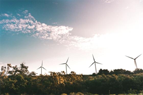 Energía eólica (Pexels)
