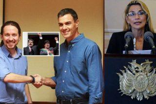 """El """"gobierno progresista"""" de España, aliado con cárteles de la droga, ladrones, corruptos y sicarios"""