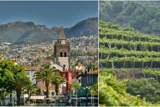 Madeira a través de su gastronomía