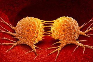Un oncólogo español descifra el origen de la metástasis