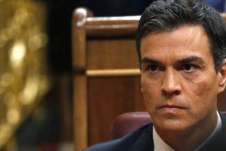 El espeluznante nuevo logotipo del PSOE que no puede vetar Pedro Sánchez y triunfa en las redes