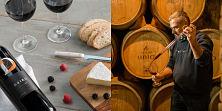 Camping resort y Enoturismo cerca de Tarragona, una tierra de buen vino