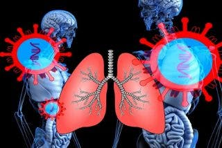 Científicos chinos encuentran la segunda 'llave' que usa el Covid-19 para penetrar en los pulmones