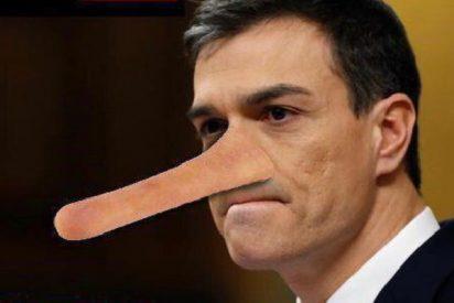 Pedro Sánchez 'Pinocho':