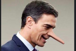 Las 100 barrabasadas del Gobierno Sánchez durante el estado de alarma