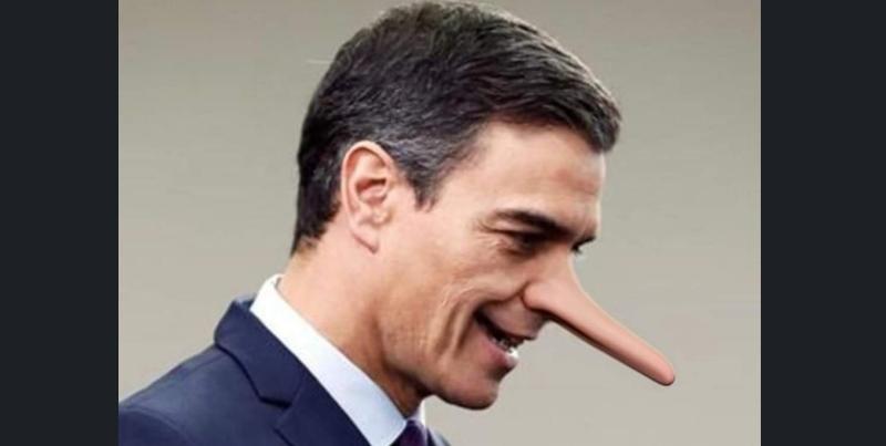Pedro Sánchez 'Pinocho' (PSOE)
