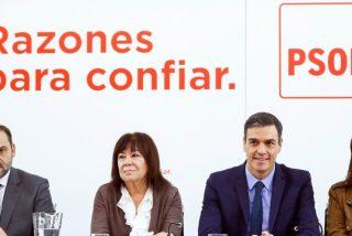 Pedro Sánchez cololca a todos sus amigotes del PSOE en puestos públicos, con sueldos opíparos